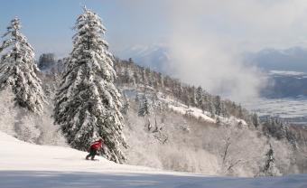 富良野スキー場 イメージ1